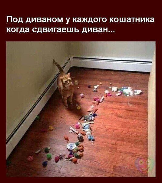 oOg xNVuI nQK8nzEivsV5fHAc1d6RmaKNXhZB0HJ 8=w535 h604 no - Волгоградцы, улыбаемся и машем))))!