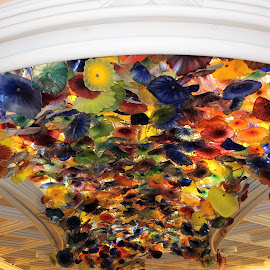 Glass Flowers by Lauren Ann - Abstract Patterns ( ceiling, glass, flowers,  )