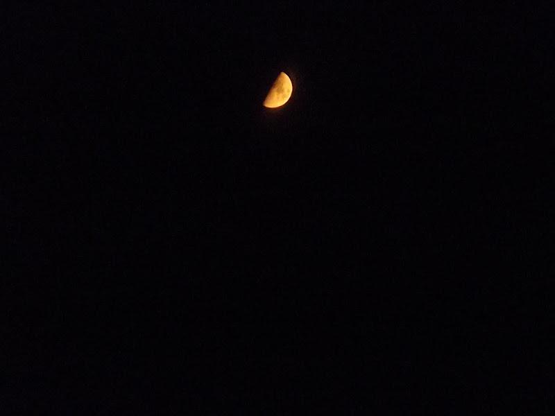 Moon  di Alessia