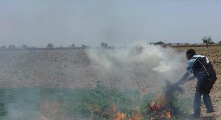 """Résultat de recherche d'images pour """"l'onssa maroc destruction de produits contaminés"""""""