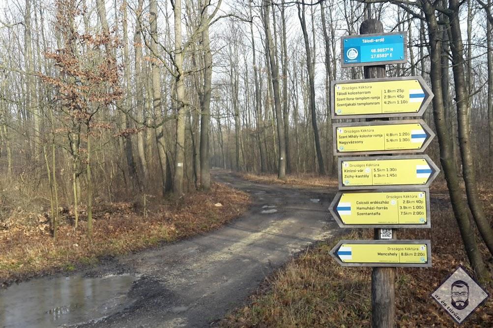 KÉP / Táblák, valahol az erdőben
