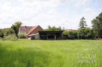 maison à Diemeringen (67)