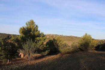 terrain à Cébazan (34)