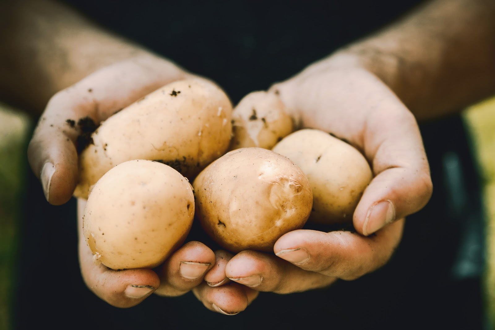 A Homage To The Potato: 10 Deliciously Nutritious Facts On A Friendly Food % - % The Voice Of Woman
