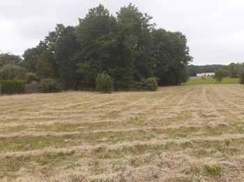 terrain à Rouffiac (17)
