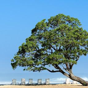 Bali Beach by Yudi Leonardo - Landscapes Travel