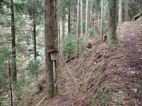 大本開祖修行の滝分岐(左へ)
