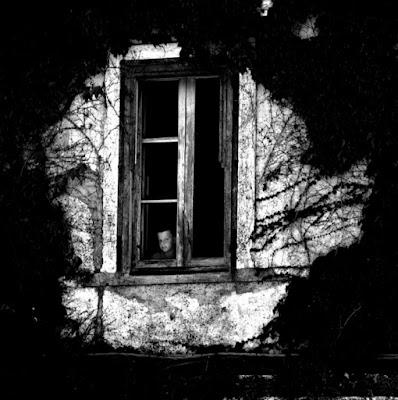 SUDDENLY, THROUGH THE WINDOW.... di Ronnjm