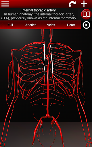 Circulatory System in 3D (Anatomy) 1.58 screenshots 12