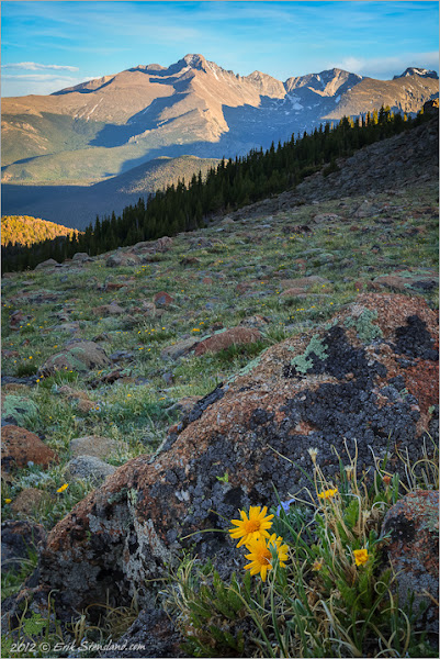 Photo: On a beautiful June evening Longs Peak stands proudly while the tundra begins to bloom.