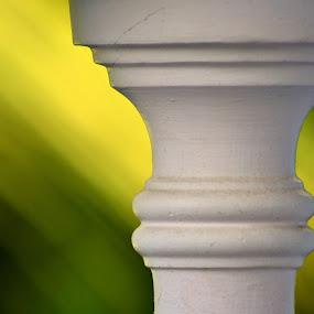 Amongst Green by Dhruva Chandramouli - Abstract Fine Art ( pillars )