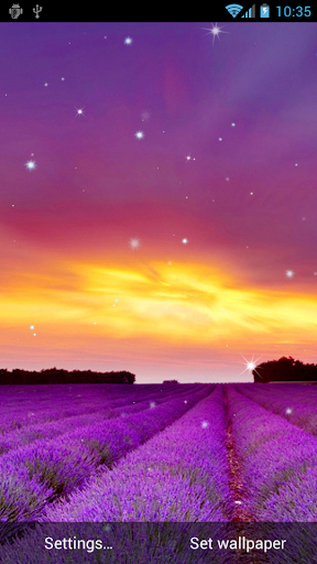 Sea Of Flowers Live Wallpapers
