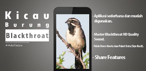 Master Burung Blackthroat Mp3 On Windows Pc Download Free 1 2 Net Burungblackthroat Adeliascu