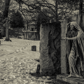 from the grave by Dale Youngkin - Buildings & Architecture Statues & Monuments ( graveyard, tombstone, grave, tomb, memorial )
