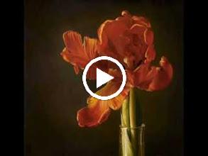 Video: A. Vivaldi  RV 133   Paris Concerto n. 2 for strings   b.c. in E minor   Europa Galante -