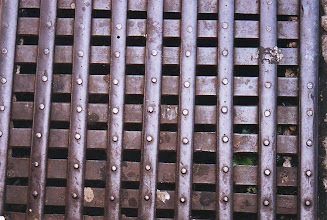 Photo: LIFE IN STREET GRATE