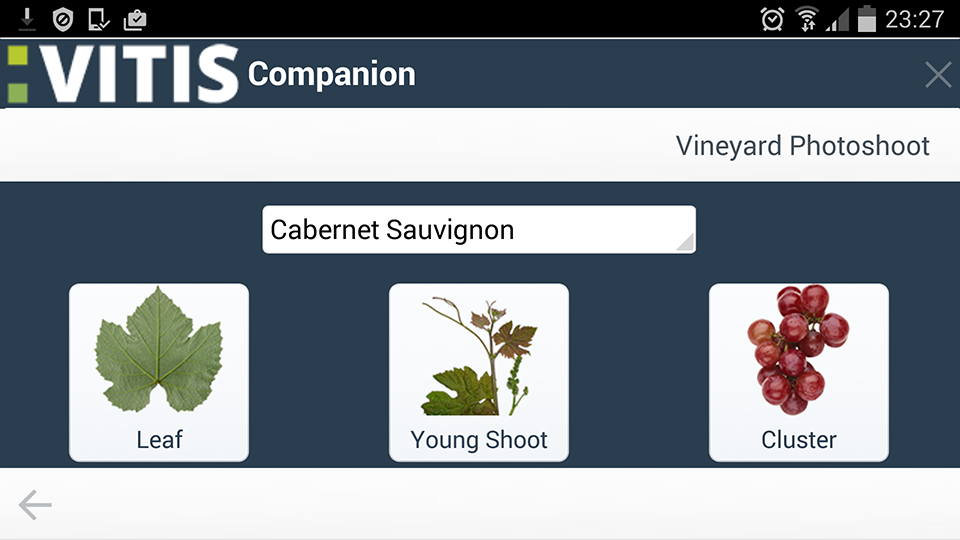 VITIS Companion- screenshot