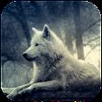 3D Wolf Wallpaper apk