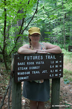 Photo: Great detailed sign at Mt Ascutney State Park by Tara Schatz