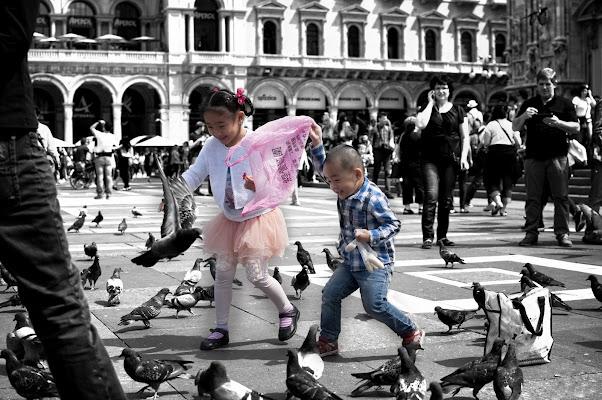 Il cacciatore di piccioni di lcanest