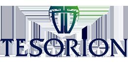 Tesorion - Logo - Transparant