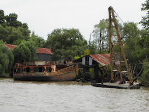 Photo: rusted out barges in the Delta area.