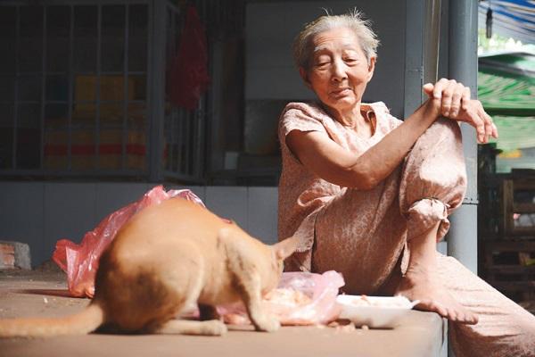 Bà Quý cũng đang cưu mang hơn trăm chú chó mèo (Ảnh: Thanh Niên)