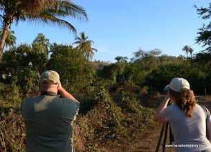 Photo: Birding the jungles and plantations at La Bajada
