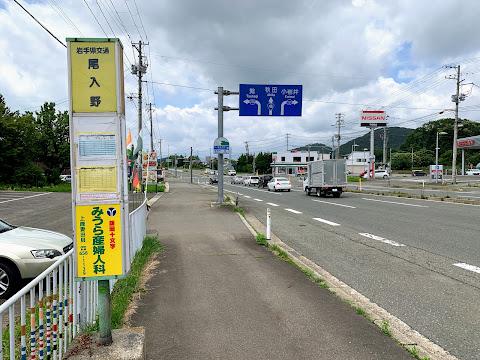尾入野バス停