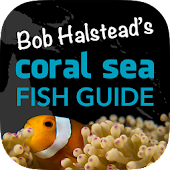 Coral Sea Fish Guide