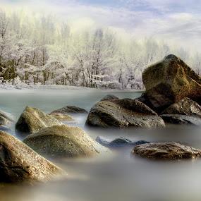 Stay strong by Mohamad Sa'at Haji Mokim - Nature Up Close Rock & Stone ( water, stone, trees, close up, slow shutter )