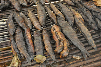 Photo: smoked fish'n'snake