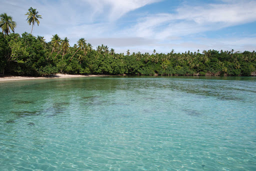 Tonga-island-jungle.jpg - The small islands of the Kingdom of Tonga offer beautiful beaches and dense foliage.