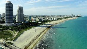 Miami 24 thumbnail