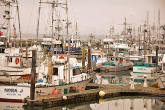 Photo: Westport Boat Basin