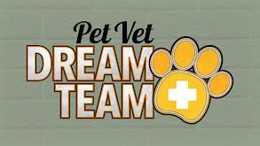 Pet Vet Dream Team thumbnail
