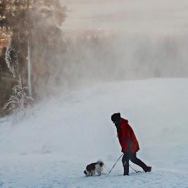 Walking the Dog by Richard Michael Lingo - People Street & Candids ( woman, snow, weather, dog, landscape )