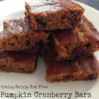Pumpkin Cranberry Bars (Grain Free, Dairy Free, Nut Free)