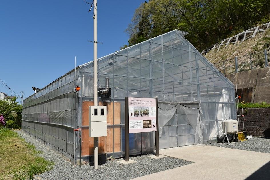 バイナリー発電後の温泉熱を活用した温室ハウス