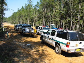Photo: Construction turned up human skeletal material in Leon County and every agency seemed to have a presence in the field.
