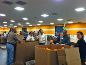 Photo: Volunteers in Bay Area CA sorting and packaging fresh produce at Second Harvest Food Bank during Sewa Day 2014