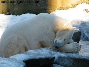 Photo: Kurze Ruhepause vor dem Wassergraben ;-)
