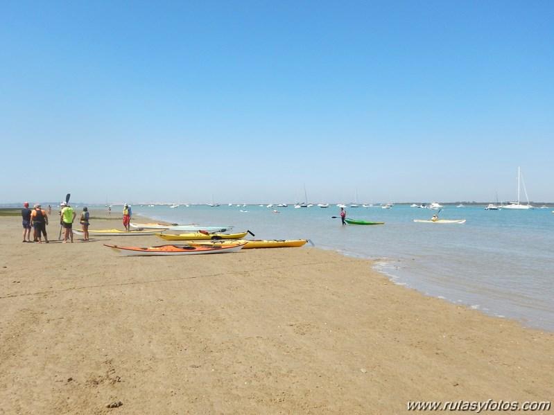 Kayak en Sancti Petri