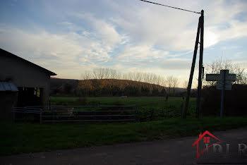 terrain à Courtesoult-et-Gatey (70)