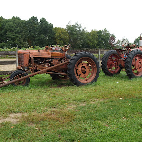 Farm tractors  by Jessie Dautrich - Transportation Other ( farm, two, tractors, rust, farming,  )