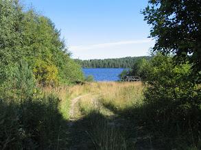 Photo: Дорога привела к озеру Толвоярви
