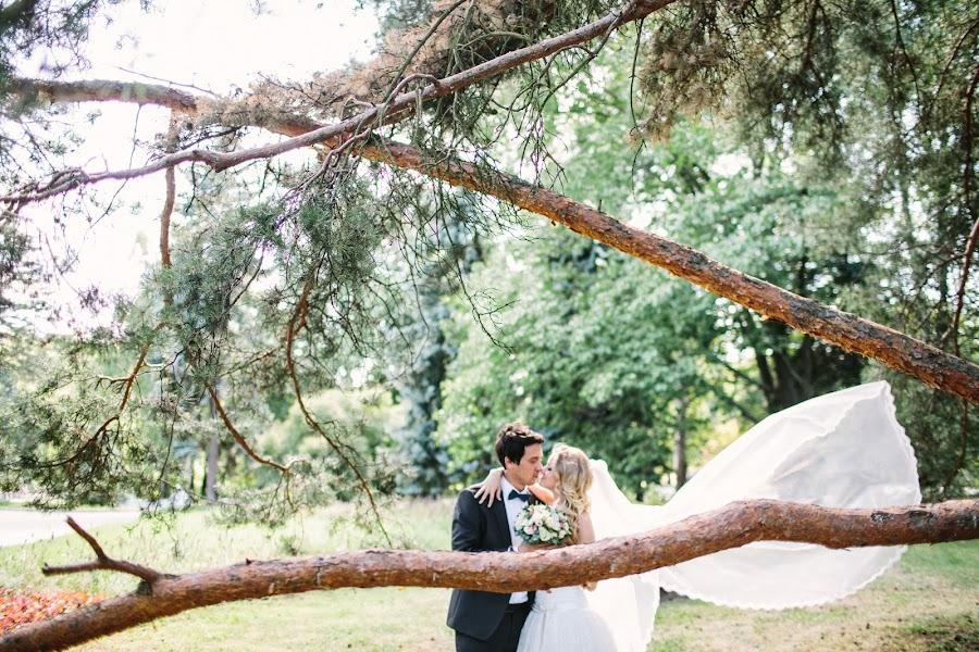 Wedding photographer Slava Semenov (ctapocta). Photo of 29.09.2014