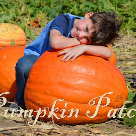 Pumpkin Patch by Shannon Maltbie-Davis - Typography Captioned Photos (  )