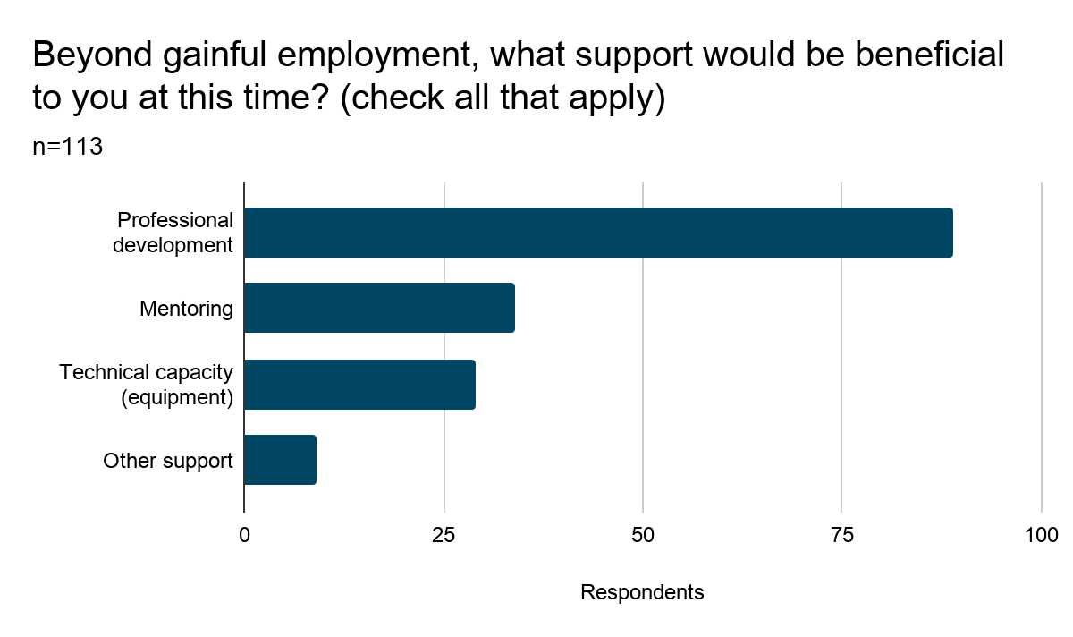 Bar chart showing results of Question 17: Beyond gainful employment, what support would be beneficial to you at this time? (Check all that apply). Results are listed below.