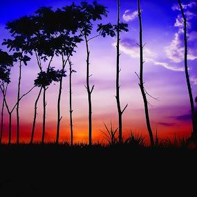 silhouette by An'naas Sobrie Al Arif - Landscapes Sunsets & Sunrises ( village, sunsets, lanscape, silhoutte, natural )